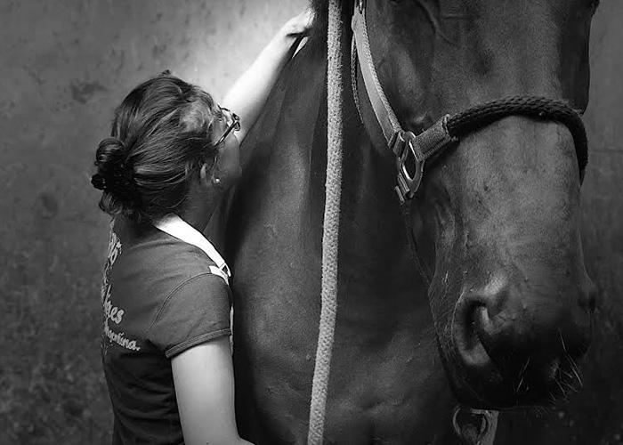 Ostéopathie pour chevaux à Parmain