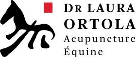 partenaire acupunctrice docteur Laura Ortola